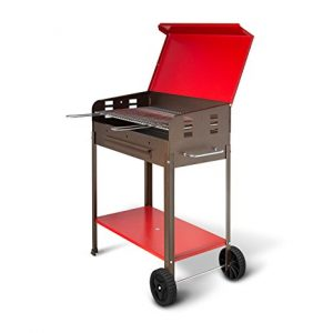 Barbecue a carbone Mille Flavia